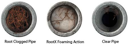 see the difference of rootx cleared pipes